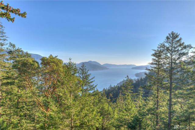 0 Marilee Lane, Orcas Island, WA 98245 (#1401082) :: Kwasi Bowie and Associates