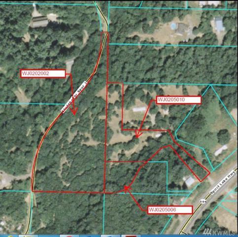 0 Spirit Lake Hwy, Castle Rock, WA 98611 (#1401428) :: Pickett Street Properties