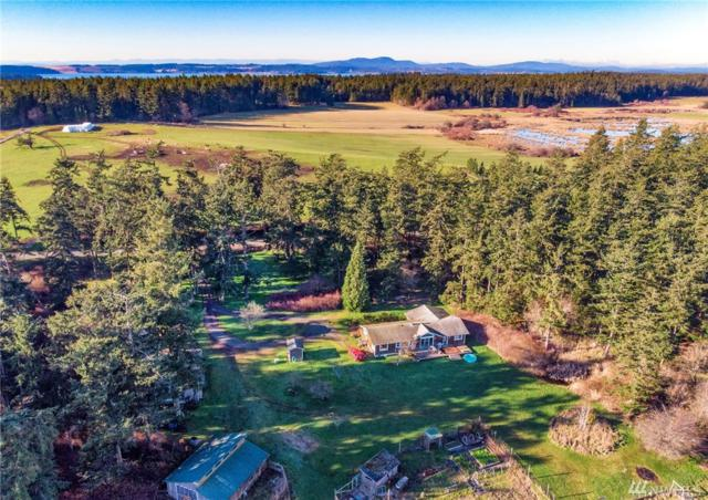 437 Davis Bay Rd, Lopez Island, WA 98261 (#1401868) :: Homes on the Sound