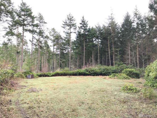 0 Lucky Dog Lane, Coupeville, WA 98239 (#1402201) :: Canterwood Real Estate Team