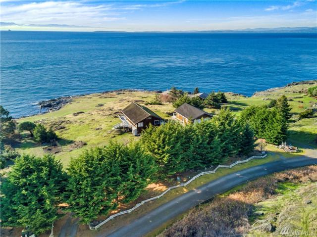 645 Victoria Dr, Friday Harbor, WA 98250 (#1402252) :: Homes on the Sound