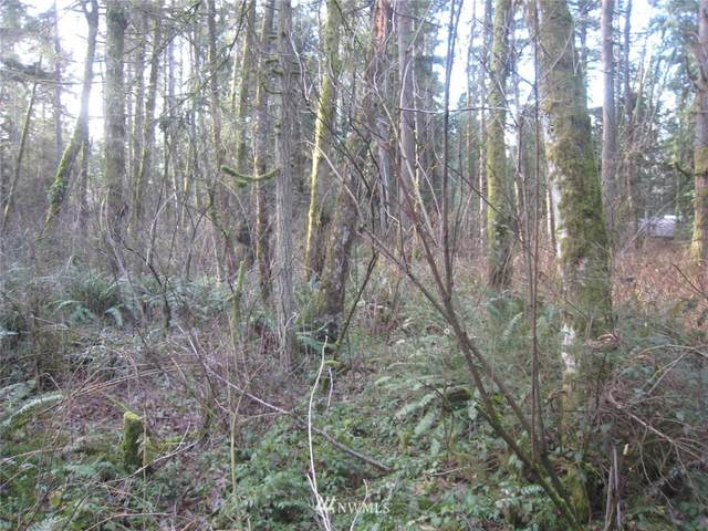46 Xx  Lot D 192nd St NW, Stanwood, WA 98292 (#1402397) :: Tribeca NW Real Estate