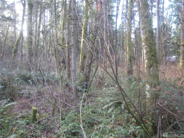 46 Xx  Lot D 192nd St NW, Stanwood, WA 98292 (#1402397) :: Homes on the Sound