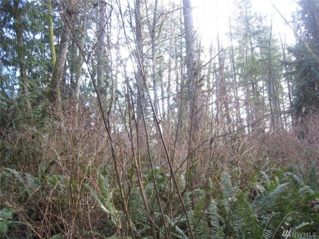 46 Xx Lot C  192nd St Nw, Stanwood, WA 98292 (#1402403) :: Homes on the Sound