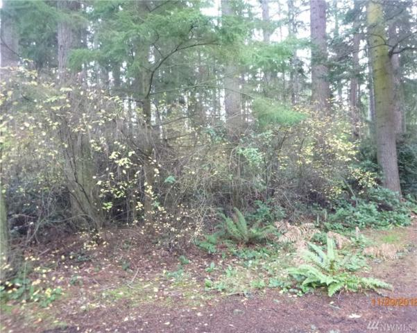 0 Rosewood Ct, Coupeville, WA 98239 (#1402535) :: Homes on the Sound