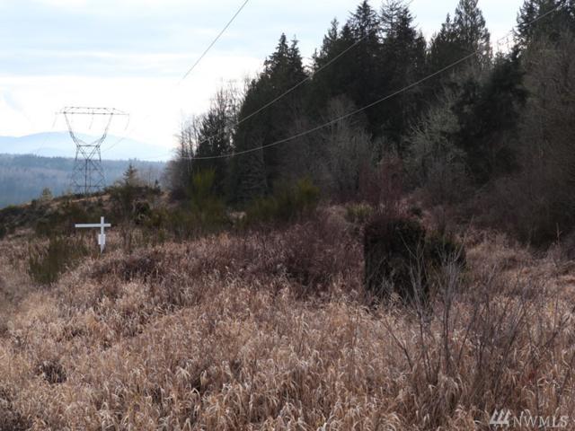 189-xx Mountain View Rd NE, Duvall, WA 98019 (#1403210) :: Better Properties Lacey
