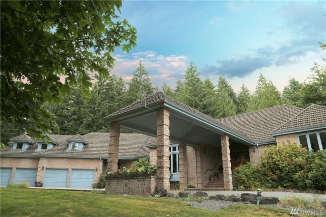 3221 157th Ave SE, Snohomish, WA 98290 (#1403874) :: Homes on the Sound
