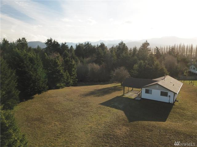 172 Bon Jon View Wy, Sequim, WA 98382 (#1404154) :: Better Homes and Gardens Real Estate McKenzie Group