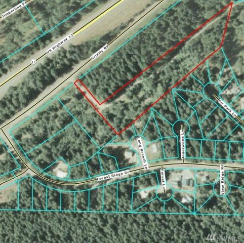 134 Grizzly Rd, Packwood, WA 98361 (#1404319) :: Homes on the Sound