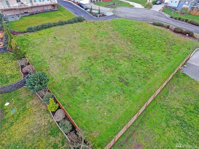 1060 St. Moritz Ct, Camano Island, WA 98282 (#1404467) :: Better Homes and Gardens Real Estate McKenzie Group