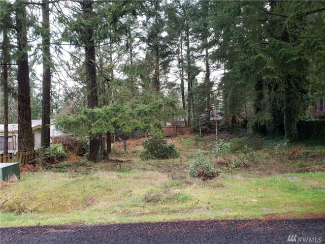 9210 147th St Ct NW, Gig Harbor, WA 98329 (#1404610) :: Ben Kinney Real Estate Team