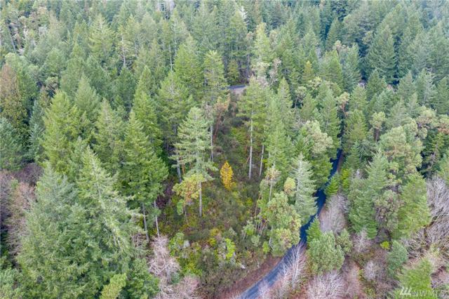 0 N Will Webb Rd, Lilliwaup, WA 98555 (#1404625) :: Homes on the Sound