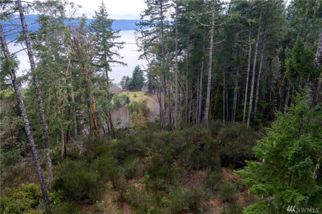 241 N Will Webb Rd, Lilliwaup, WA 98555 (#1404636) :: Homes on the Sound