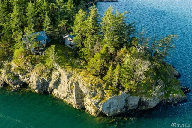 764 Broken Point Rd, Shaw Island, WA 98286 (#1404685) :: Ben Kinney Real Estate Team