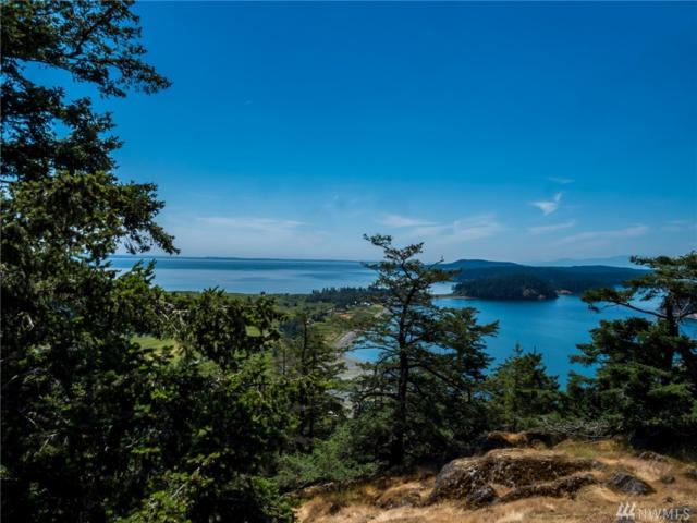 96 Summit Dr, Decatur Island, WA 98221 (#1404781) :: Canterwood Real Estate Team