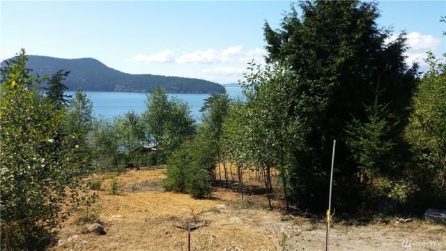 4302 Osprey Lane, Anacortes, WA 98221 (#1405196) :: KW North Seattle