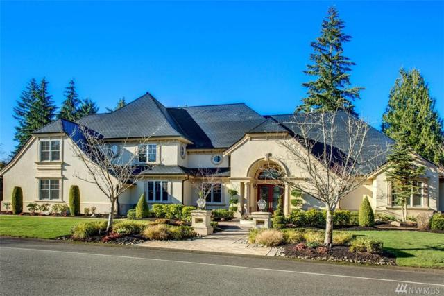 14015 212th Dr NE, Woodinville, WA 98077 (#1405534) :: Homes on the Sound