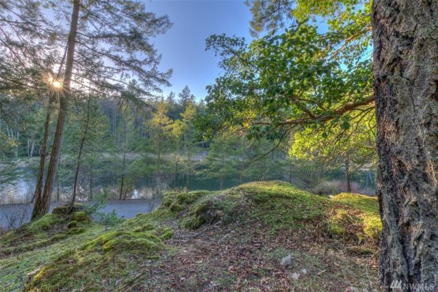4 Spring Point Lot 4B Rd, Orcas Island, WA 98243 (#1405541) :: Homes on the Sound