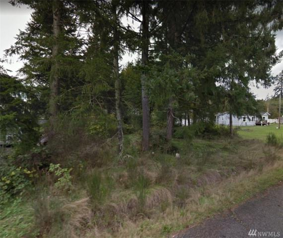 310 E Wood Lane, Shelton, WA 98584 (#1405709) :: Better Homes and Gardens Real Estate McKenzie Group