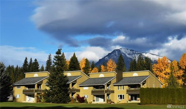 20795 Kahler Dr E1, Leavenworth, WA 98826 (#1406265) :: Homes on the Sound