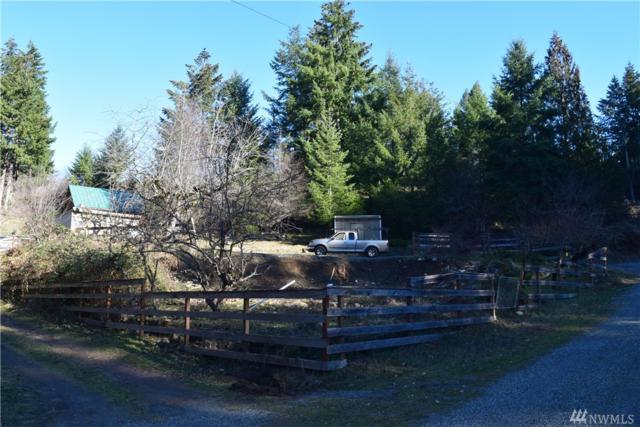 155 Powerhouse Rd, Packwood, WA 98361 (#1406385) :: Canterwood Real Estate Team