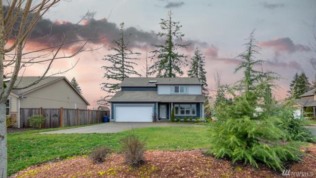 215 Stadium Wy, Napavine, WA 98565 (#1406911) :: Homes on the Sound