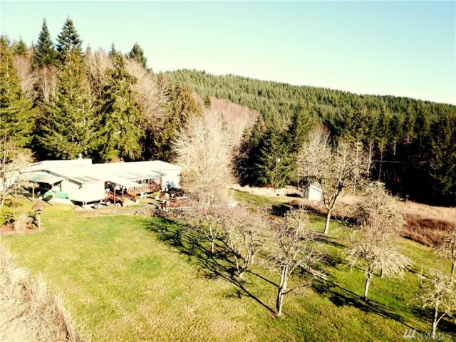 307 Labarre Rd, Chehalis, WA 98532 (#1407104) :: Homes on the Sound