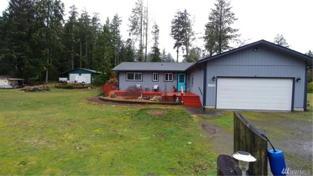 21709 V Lane, Ocean Park, WA 98460 (#1407106) :: Homes on the Sound