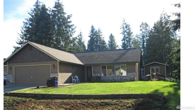 6102 189th Lp SW, Rochester, WA 98579 (#1407149) :: Northwest Home Team Realty, LLC