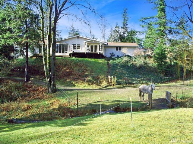 31414 358th Ave SE, Ravensdale, WA 98051 (#1407191) :: Hauer Home Team