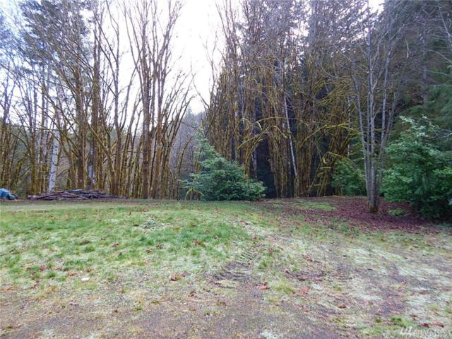 11 Mallard Cove - Lot 1A, Port Angeles, WA 98363 (#1407444) :: Kimberly Gartland Group