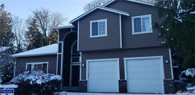 19200 53 Ct NE, Lake Forest Park, WA 98155 (#1407639) :: Homes on the Sound
