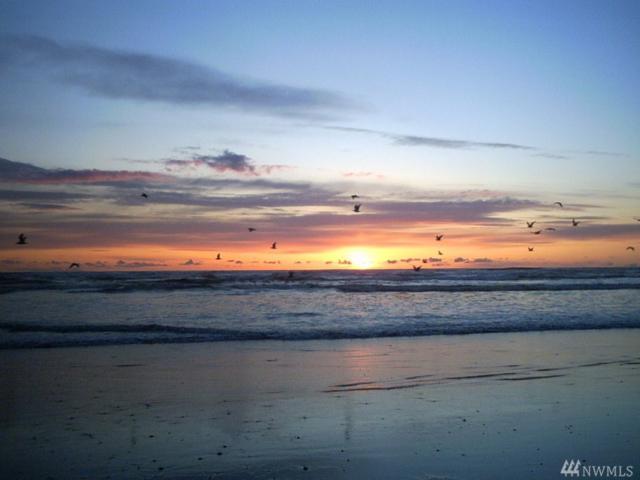 1377 Ocean Shores Blvd SW #504, Ocean Shores, WA 98569 (#1407726) :: Homes on the Sound