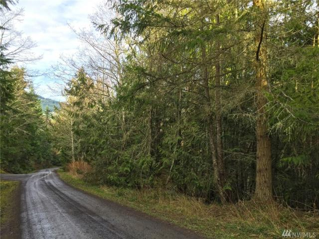 9999 Lone Tree Dr Lot 1, Sequim, WA 98382 (#1407767) :: Better Homes and Gardens Real Estate McKenzie Group