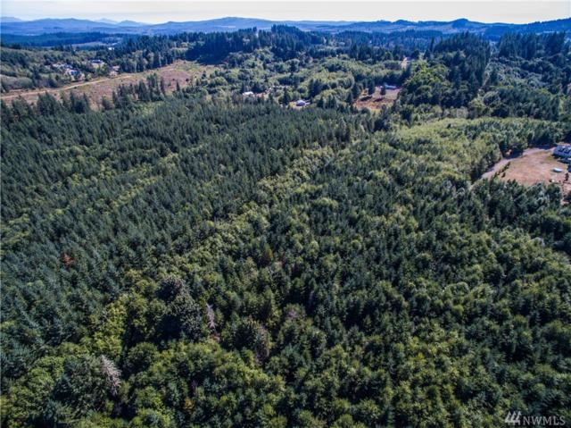 0-Lot 3 Twins Lane, Castle Rock, WA 98611 (#1407831) :: The Kendra Todd Group at Keller Williams