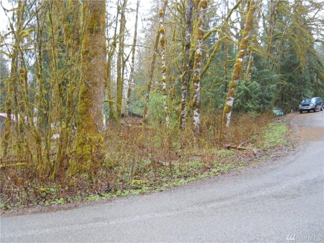 111 Begis Rd, Darrington, WA 98241 (#1407874) :: Homes on the Sound