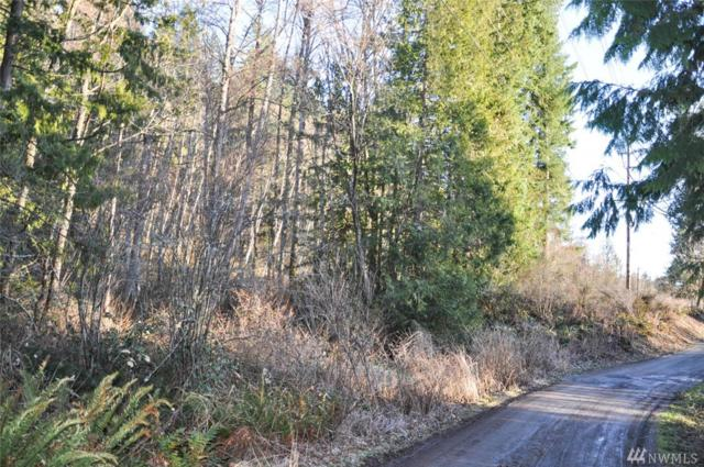 1565 Jerry Garcia Wy, Bellingham, WA 98226 (#1407900) :: Homes on the Sound