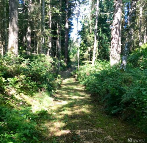 0-xxx Wintergreen Dr. (Lot B), Clinton, WA 98236 (#1407968) :: Ben Kinney Real Estate Team