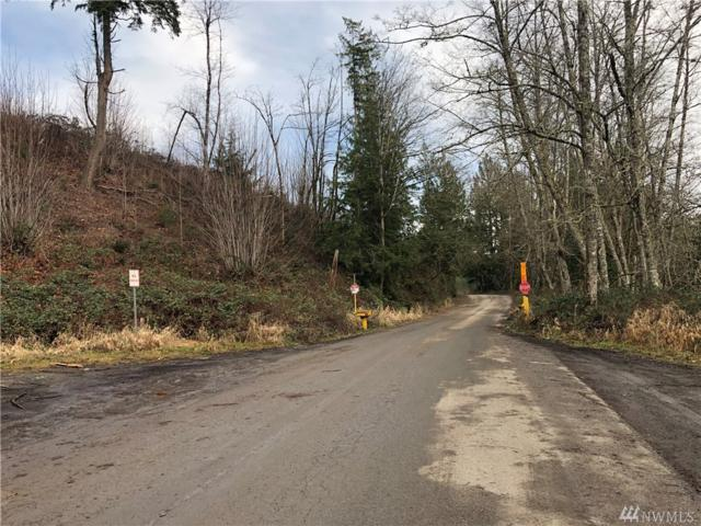 2-xx Scotty Road (Lot 2), Granite Falls, WA 98252 (#1408089) :: Pickett Street Properties