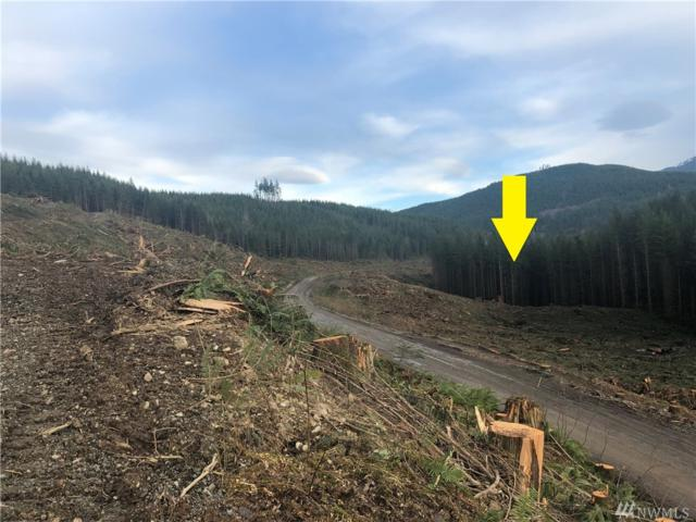 3-xx Scotty Road (Lot 3), Granite Falls, WA 98253 (#1408096) :: Pickett Street Properties