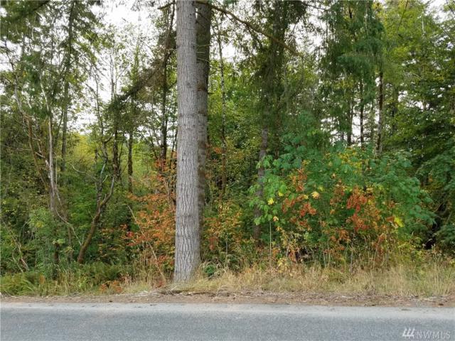 0 Raubuck Rd, Napavine, WA 98596 (#1408269) :: Homes on the Sound