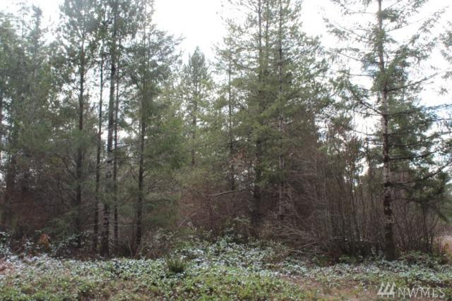 61 W Lot On Fish Hatchery Rd, Matlock, WA 98541 (#1408324) :: The Kendra Todd Group at Keller Williams
