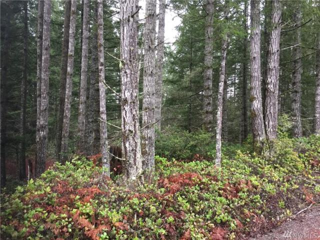 0-Lot 2 Wye Lake Blvd SW, Port Orchard, WA 98367 (#1408620) :: Real Estate Solutions Group