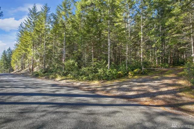 0-Lot 26 Dewatto Rd, Seabeck, WA 98312 (#1409105) :: The Deol Group