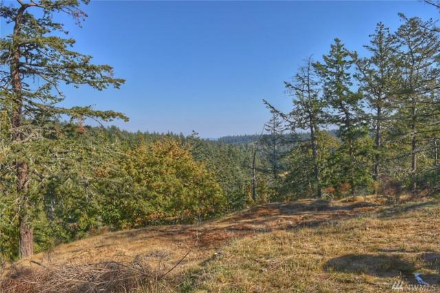 0-TBD Orcas Hill Rd, Orcas Island, WA 98280 (#1409236) :: Mike & Sandi Nelson Real Estate
