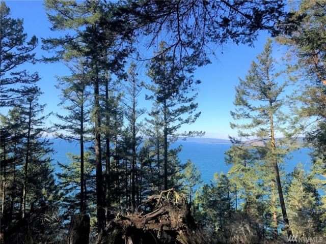 301 Karen Lane, Orcas Island, WA 98245 (#1409416) :: Real Estate Solutions Group