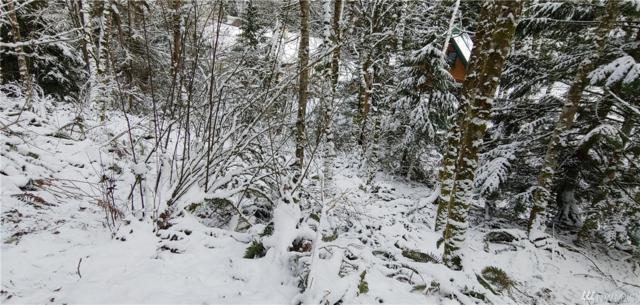 29 Rose Ridge Lp, Bellingham, WA 98229 (#1409639) :: Better Homes and Gardens Real Estate McKenzie Group
