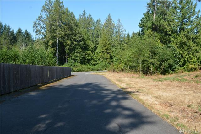 1702 151st Stct NW, Gig Harbor, WA 98332 (#1409750) :: NW Home Experts
