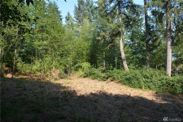 2318 155th St NW, Gig Harbor, WA 98332 (#1409753) :: Homes on the Sound