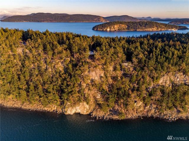 295 Hill Top Wy, Lopez Island, WA 98261 (#1409971) :: Homes on the Sound